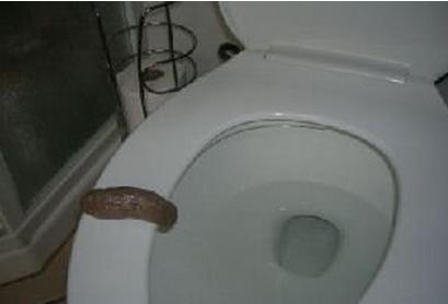 Gli oggetti pi strani venduti su amazon - Cacca nel bagno ...